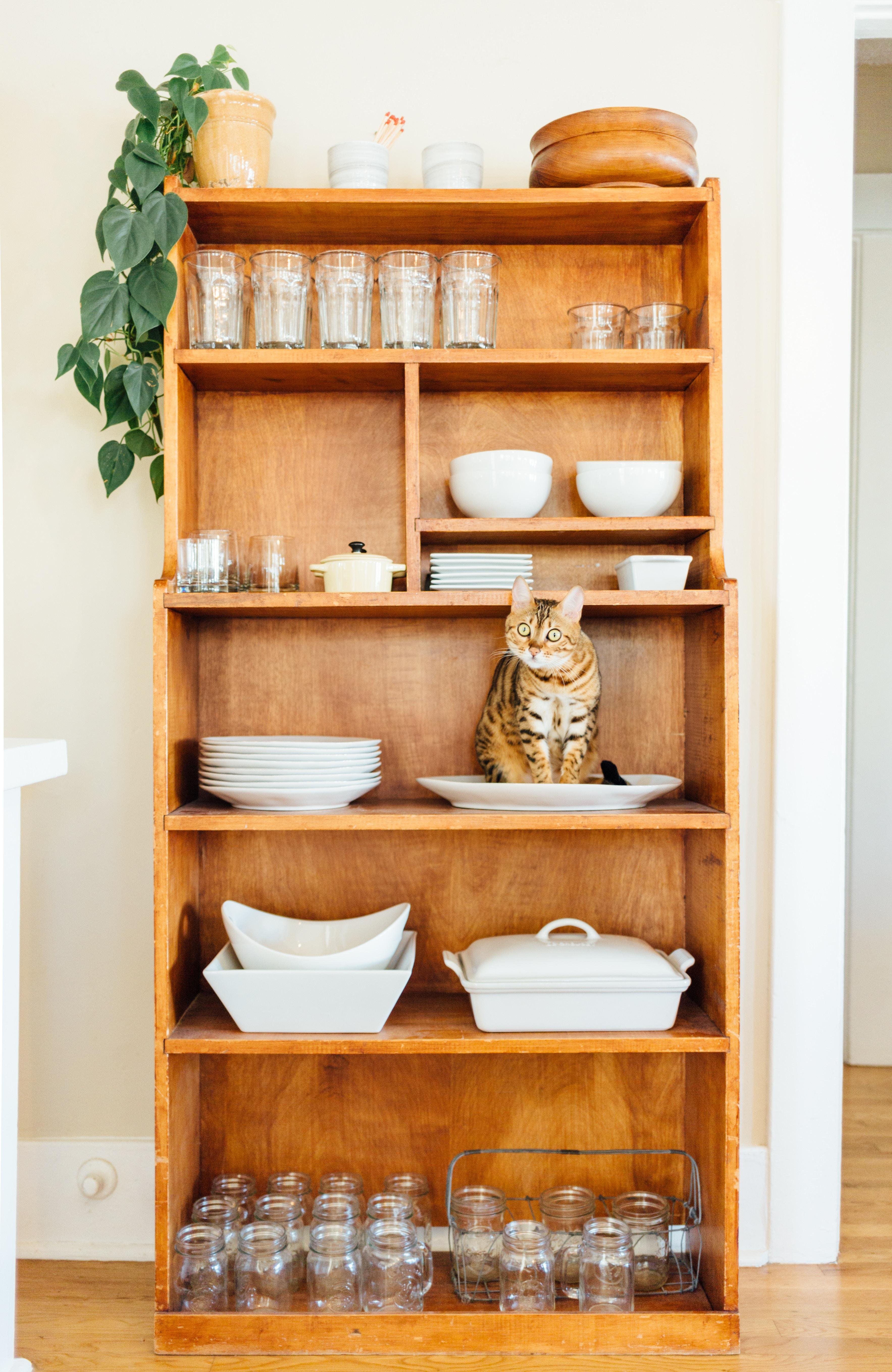 Organize Home Basics